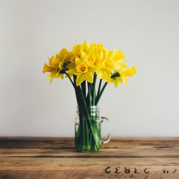 consejos primaverales