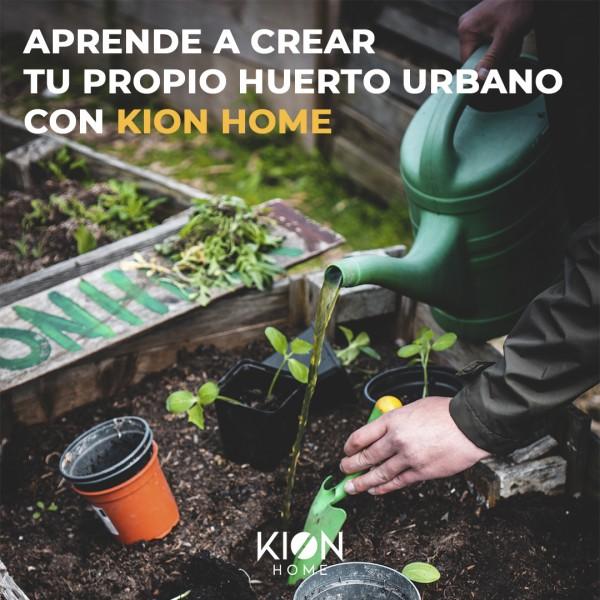 el blog de kion